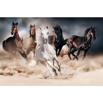 Glassbilde Horses - 120x80 cm