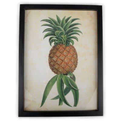 Bilde Ananas