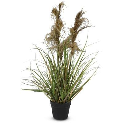 Kunstig plante - Gress/Pampasgress H115 cm